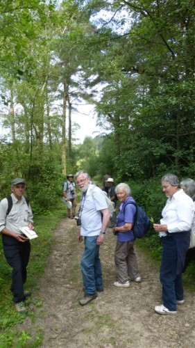 Picture of botanists at Black Down