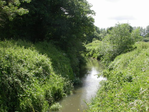 Picture of River Rother, Salehurst