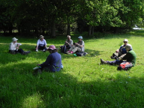 Picture of the lunch break in a botanical field meeting