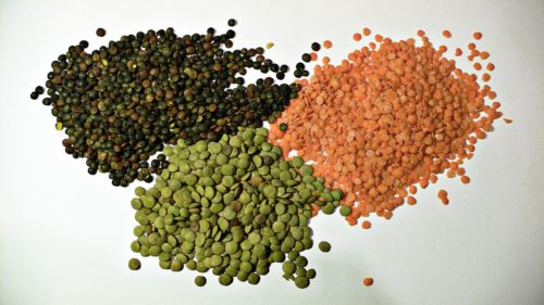 Picture of Lens culinaris (Lentil)