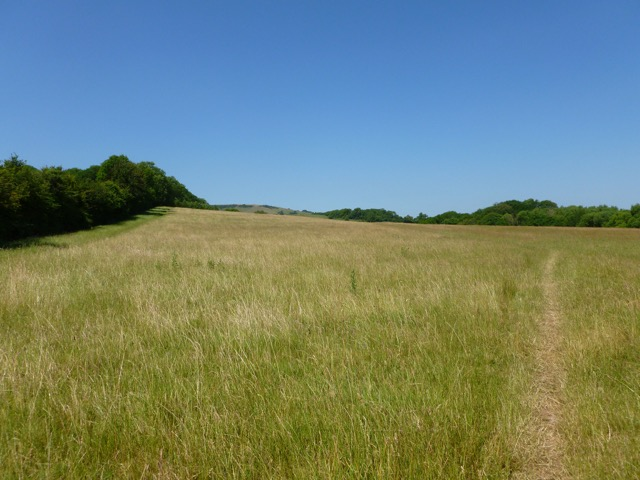 Picture of countryside near Wannock