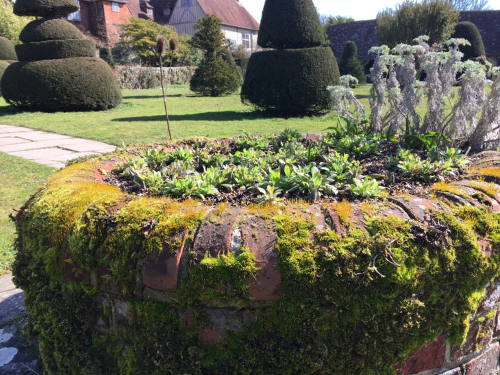 Picture of Garden at Great Dixter