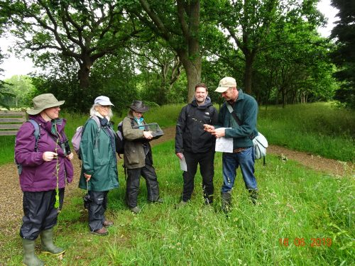 Picture of botanists at Bates Green Farm