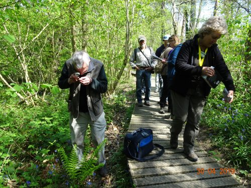 Picture of botanists at Standen